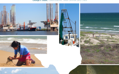 Texas Resilience Planning